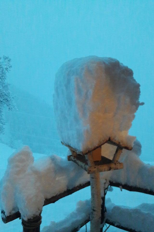 Schnee auf dem Vogelhaus