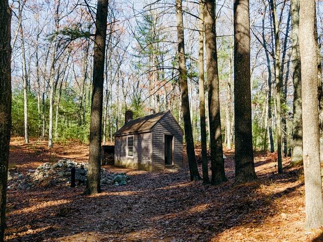 Kleines Haus in einem Wald.