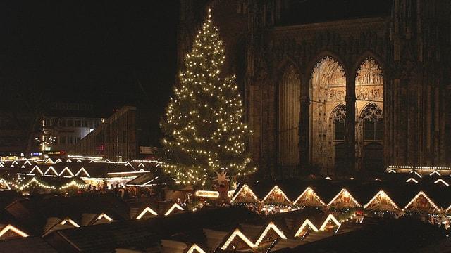 Der Ulmer Weihnachtsmarkt und der Christbaum vor dem Münster bei Nacht.
