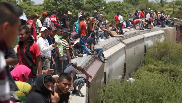 Mexikaner sitzen auf einem Zug, genannt «La bestia».