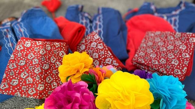 rosas da palpiri, chamischas blauas