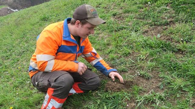 Ein Landwirt gräbt einen Engerling aus.