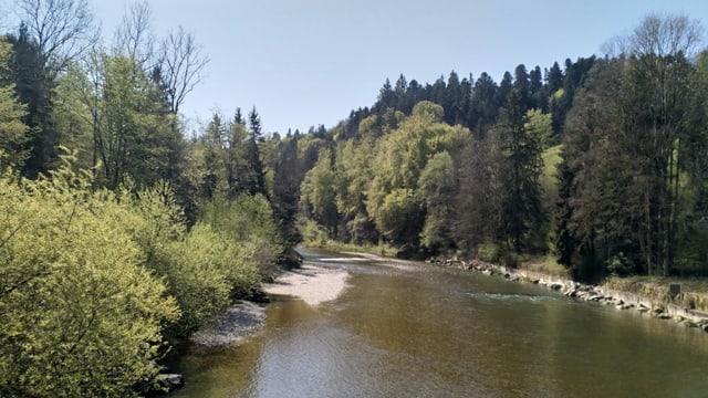 Ein Fluss mit Bäumen am Ufer.