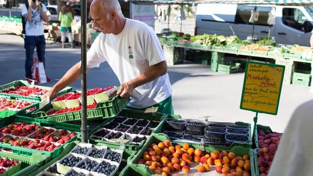 Viele Sorten sind dieses Jahr besonders süss geraten: Kirschen, Aprikosen, Erdbeeren und bald auch Äpfel und Birnen gefielen die vielen Sonnenstunden.