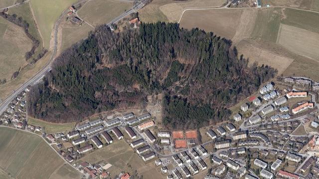 Luftbild des Büschiwaldes.