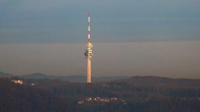 Die Chrischona mit dem Fernsehturm in der Abendsonne.