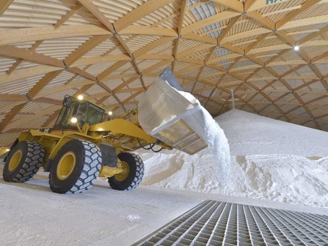 Ein Bagger schaufelt Salz auf einen grossen Haufen.