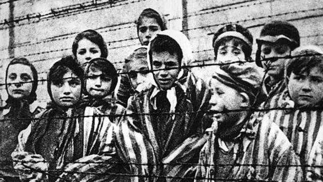 Video «Die letzten Zeugen: Der Holocaust und Antisemitismus heute» abspielen