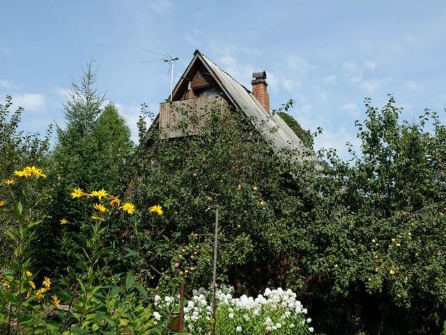 Datscha mit Garten