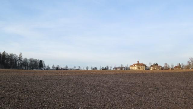 Acker mit Haus im Hintergrund.