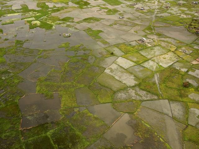Überschwemmte Felder in Mosambik