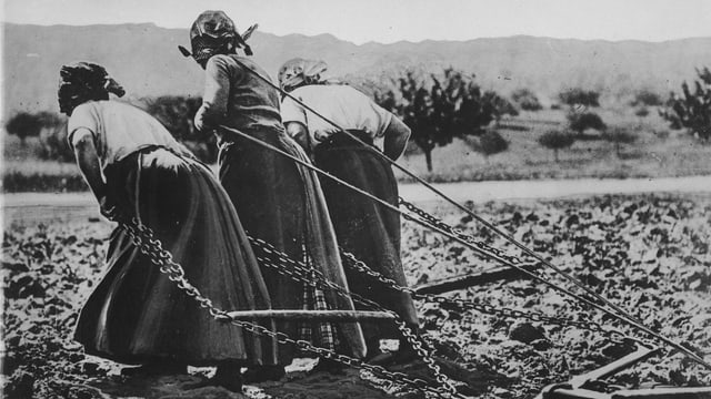Historische Aufnahme: Drei Frauen ziehen einen Pflug.