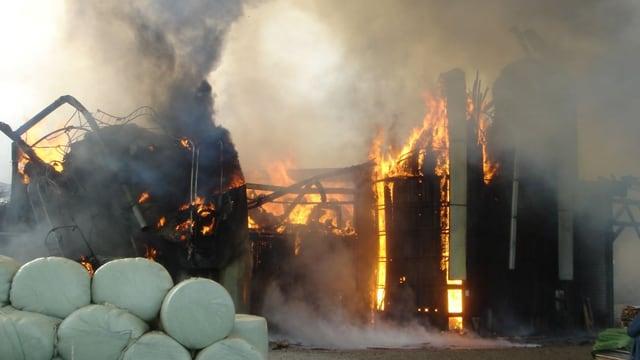 Ein grosser Teil des Stalles ist niedergebrannt.