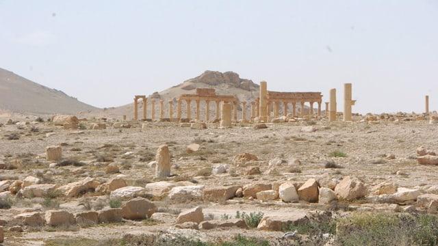 La citad veglia, antica da Palmyra en Siria