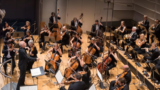 Ein Orchester und ein Dirigent in Aktion.