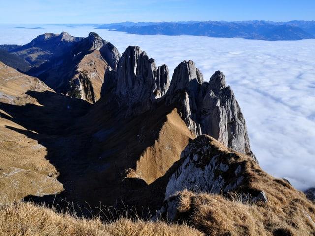 Berggipfel ragen aus dem Hochnebel, der Himmel darüber ist wolkenlos.