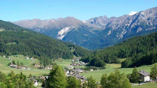 Blick in ein Bergtal im Sommer