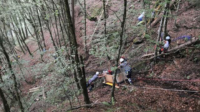 Waldstück in steilem Gelände - eine abgestürzte Kabine einer Seilbahn liegt am Boden.
