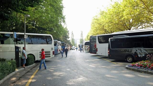 Busse auf Parkplatz.