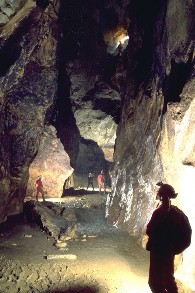 Ein Team von Höhlenforschern steht im Wasserdom.