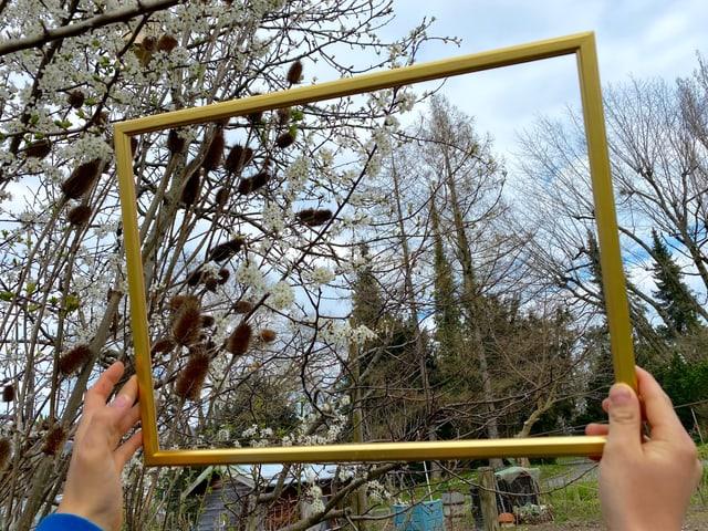 Baum im Rahmen