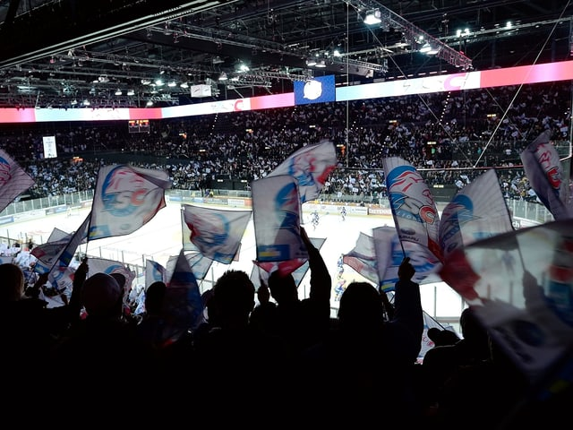 Fans schwingen Fahnen der ZSC Lions im Hallenstadion