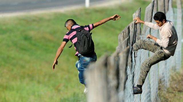 Männer klettern über einen Zaun