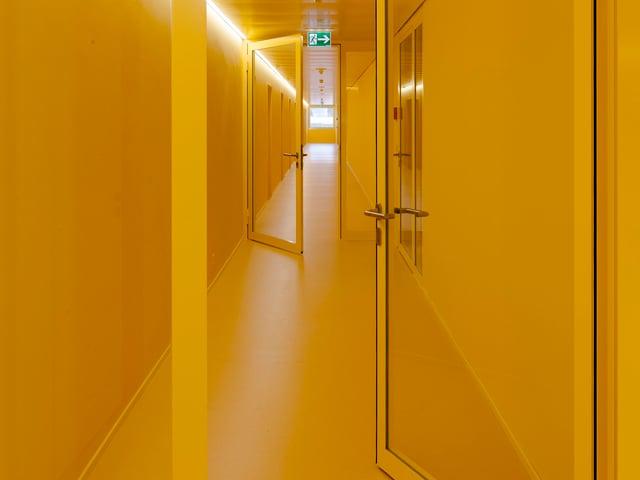 Blick in einen Büro-Korridor