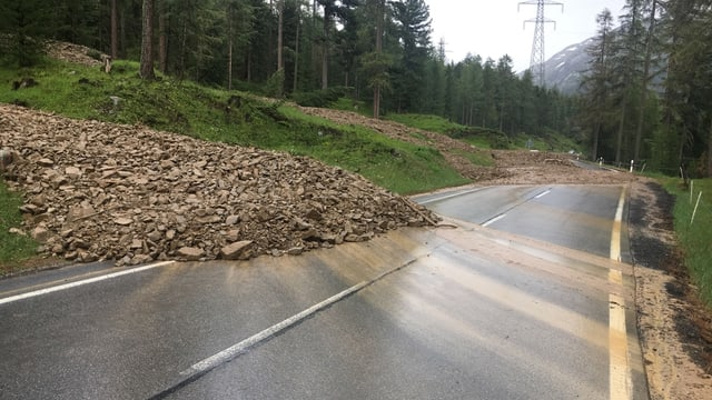 Sbuvaditschs sin la via dal Pass dal Bernina.