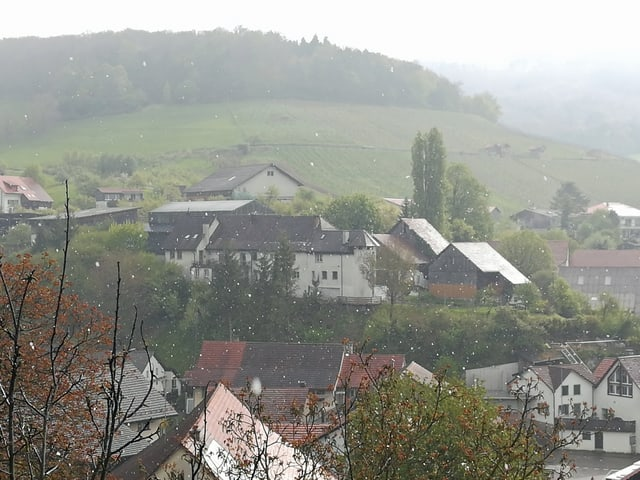 Mehrere Häuser auf einem Hügel.