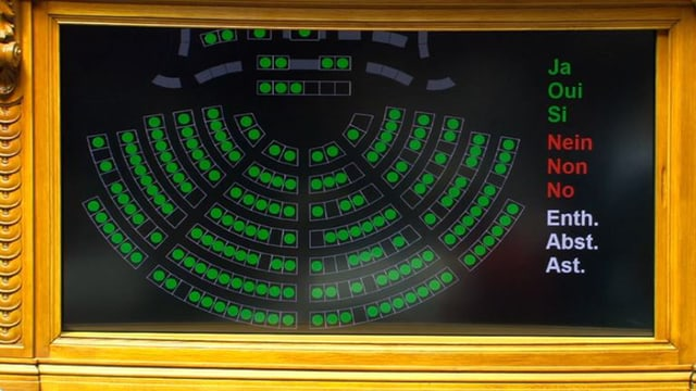 Der gesamte Nationalrat hat Ja gestimmt.