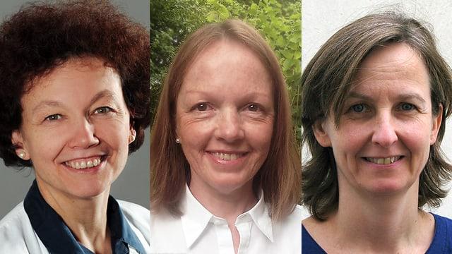 Prof. Hansjakob Furrer, Dr. Marianne Lerch und Dr. Miros OpravilProf. Hansjakob Furrer, Dr. Marianne Lerch und Dr. Miros Opravil