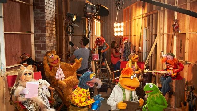 Stehen und sitzen vor dem Umzug ins Fernsehen: die «Muppets» um Kermit & Co.