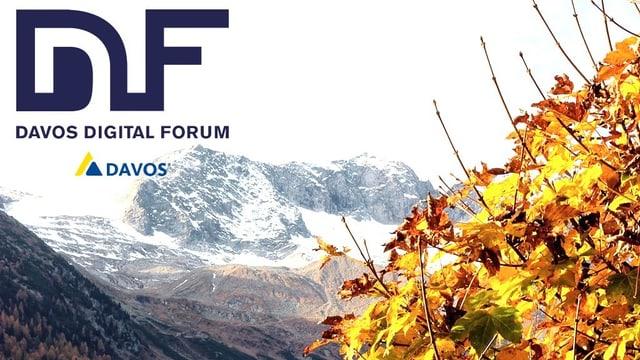 Davos Digital Forum 2018.