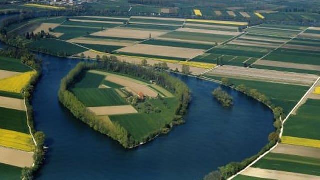 Insel in einem Fluss, daneben Felder