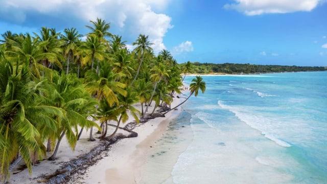 Ein Strand in der Karibik