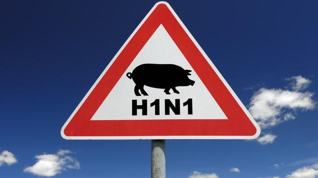 Verkehrsschild mit einem Schwein und der Aufschrift H1N1