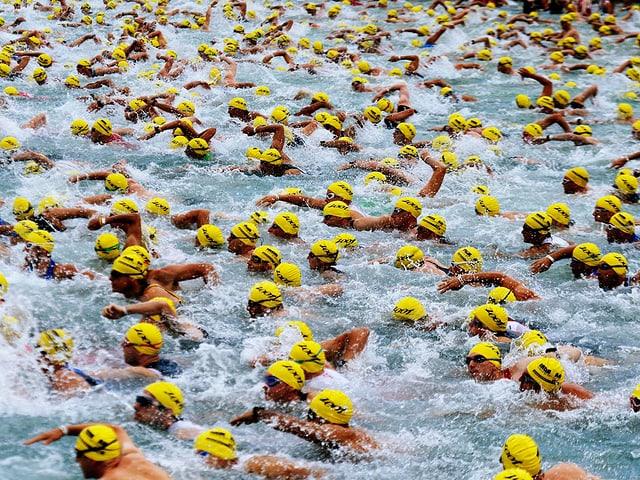 Zu sehen sind hunderte von Triathleten auf der Schwimmstrecke.