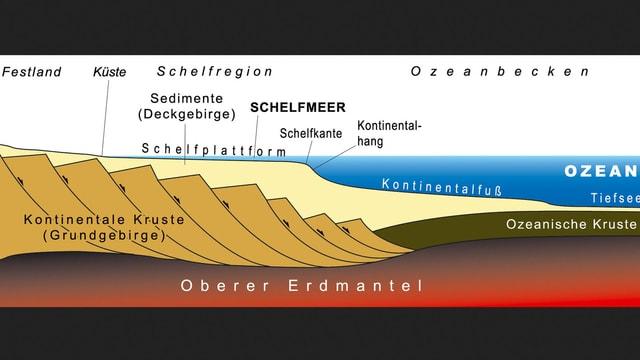 Die Schelfplattform (Festlandsockel) ist wegen der Bodenschätze wirtschaftlich interessant.