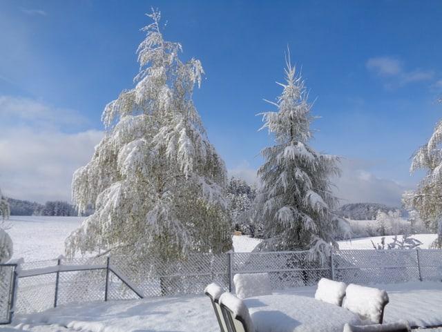 Verschneite Landschaf, blauer Himmel.