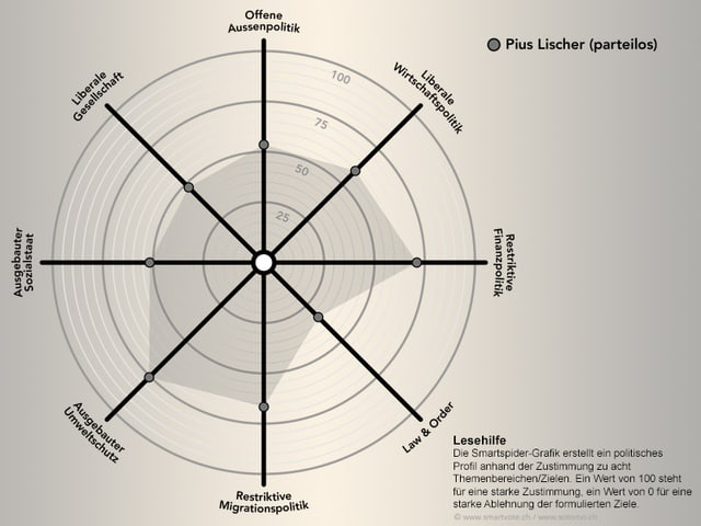 Smartspider von Pius Lischer