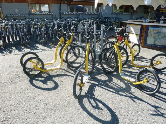 Auf einem Kiesplatz stehen zahlreiche gelbe Trottinette