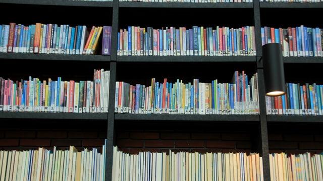 Büchergestell in einer Bibliothek
