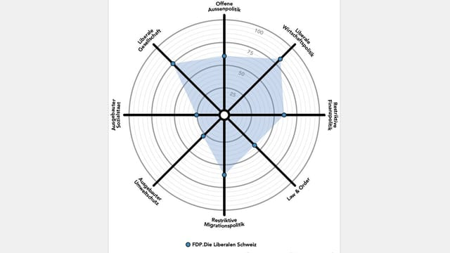 Smartspider-Grafik FDP