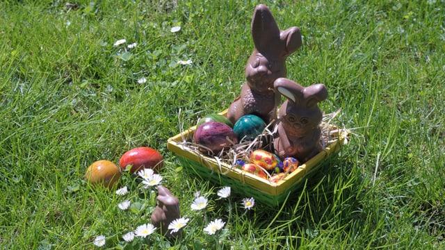 Grüne Wiese mit weissen Gänseblümchen. In der Mitte ein Osternest mit zwei Schokoladenhasen, farbigen Eiern und Heu.