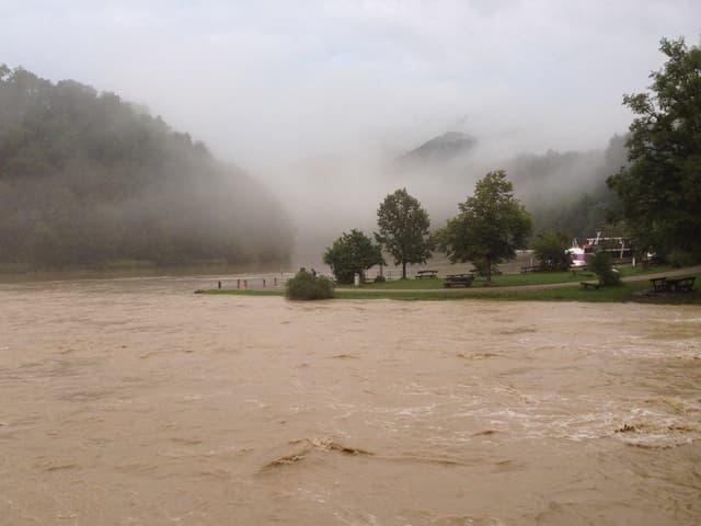 Fluss mit hohem Wasserstand und braunem Wasser