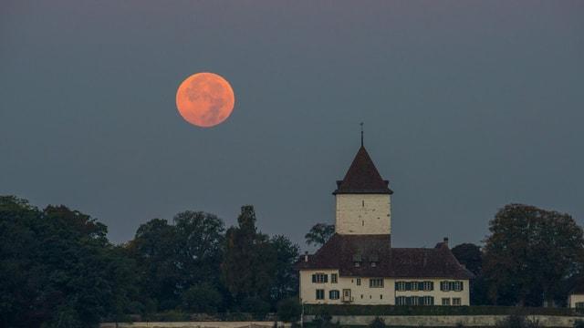 Nach der Mondfinsternis war der Vollmond noch rund eine Stunde zu sehen, so auch über Schlosswil.