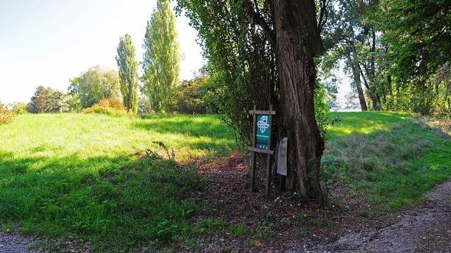 Naturschutzgebiet «zHose» in Stein am Rhein