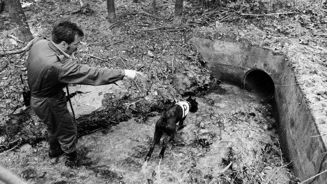 Ein Polizist und sein Spurenhund waten durch einen Bach.