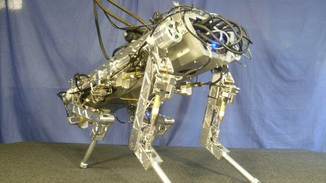 Der «Hydraulically Actuated Quadruped» ist ein vierbeiniger Roboter, der schwieriges Terrain überwinden soll.